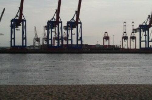 Article : Les vertus du Hamburg(er) véritable
